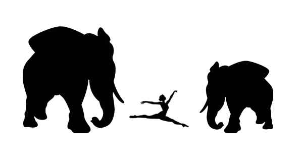 Elephants and Ballerina